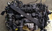 Ford Focus 1.6 TDCI motor (bontott) G8DB